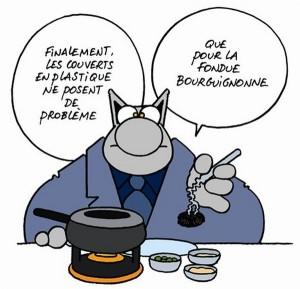 le chat fondue bourguignonne